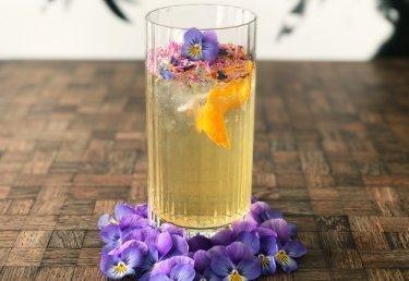 Cheers! 5 Rezepte für feine Longdrinks