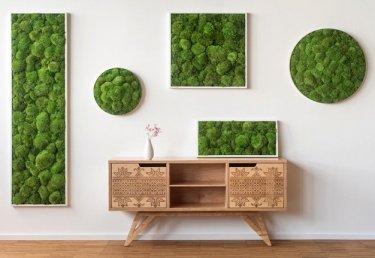 Pflanzenwand bauen