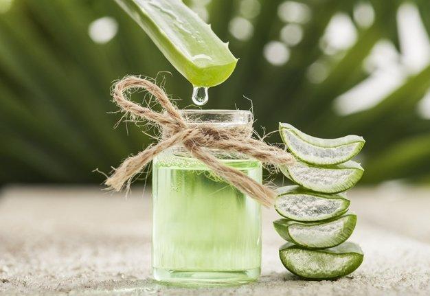 Aloha, Aloe! Wirkung, Herstellung und Anwendung von Aloe Vera Gel