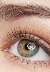 Beauty Talk: Wie kann ich Augenbrauen nachziehen?