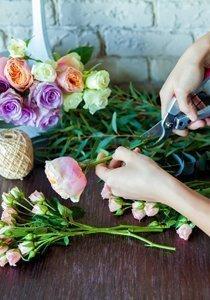 Vielen Dank für die Blumen! Die 9 bezauberndsten Blumenläden in Zürich