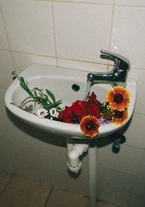 Wassereinlagerungen loswerden: Hilfreiche Tipps gegen Wassereinlagerungen während der Periode