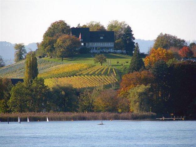 Der Laddgasthof Halbinsel Au ist ein wunderbares Ausflugsrestaurat für die ganze Familie.