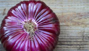 Leckere Medizin! Abwehrkreafte mit gesundem Essen stärken
