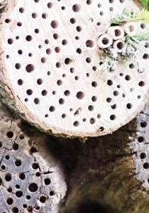 Pension Maja: Wir bauen ein Insektenhotel