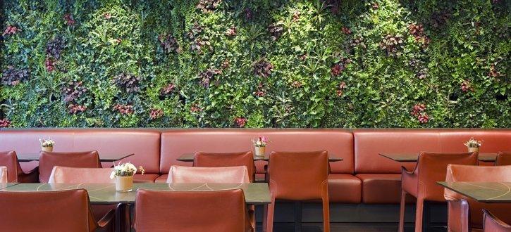 Pflanzenwand im Restaurant Fontana. Ein Projekt von Hydroplant.