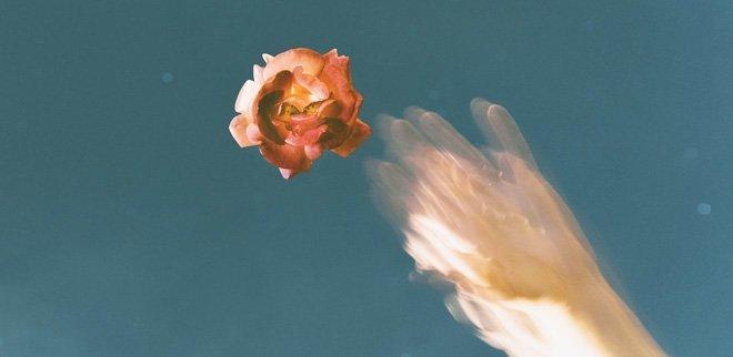 Blume in der Luft mit Hand