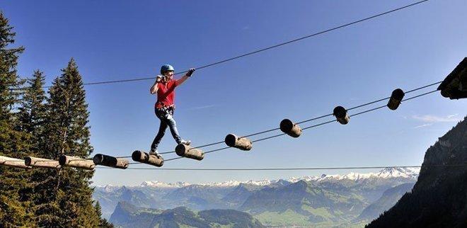 Ausflüge zu zweit: Im Seilpark geht es für euch hoch hinaus