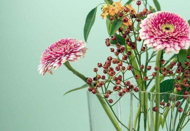 Unsere liebsten Blumenlieferanten in der Schweiz