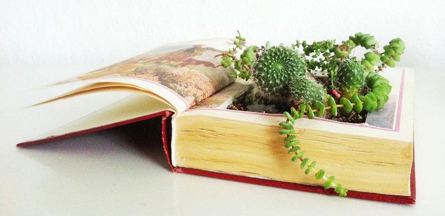 bepflanztes buch wie aus einem alten buch ein blumentopf wird. Black Bedroom Furniture Sets. Home Design Ideas