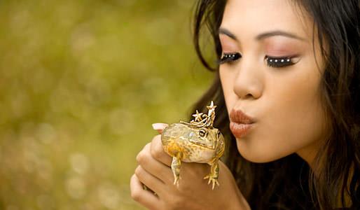 Küss den frosch partnersuche