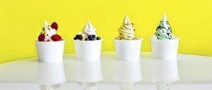Ice, Ice, Baby! Dieses Frozen Joghurt Rezept servieren wir eiskalt
