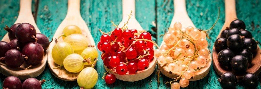 Diese Früchte sind super Diät geeignet. Wer viel von diesen Früchten isst, anstatt süssen Dickmachern nimmt ab.