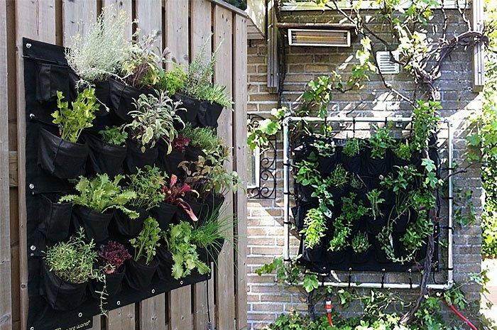 Balkon Gestalten Eetbare Wand Für Vertikalen Balkongarten