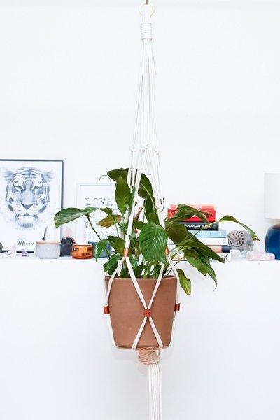 einrichtungsideen pflanzen aufh ngen. Black Bedroom Furniture Sets. Home Design Ideas