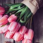 Tipp gegen Langeweile: Kauf dir Blumen