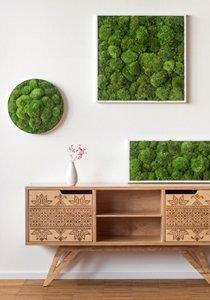 pflanzenwand selber bauen das wichtigste know how f r den wandgarten. Black Bedroom Furniture Sets. Home Design Ideas