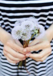 Heuschnupfen: Natürliche Mittel bei Pollenallergie