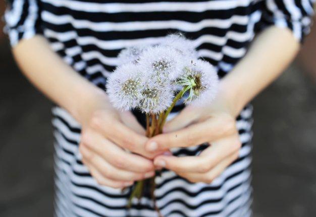 Natürliche Mittel, die gegen eine Pollen-Allergie helfen