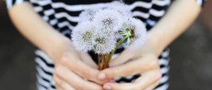 Natürliche Mittel die gegen eine Pollen-Allergie helfen
